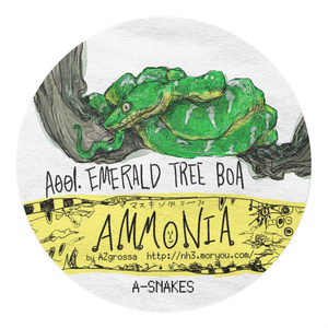 A001:Emerald tree boa /Ammonia Masking tapes