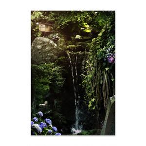 kamakura natureポストカード