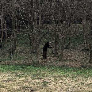 動物の森EP
