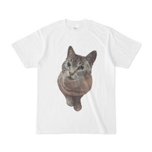 ねこのそらTシャツ