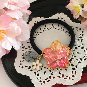 桜咲くヘヤゴム
