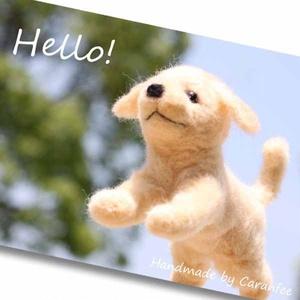 空飛ぶワンコの Hello カード