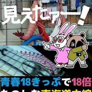 見えたァー! 青春18きっぷで18倍たのしむ東海道本線