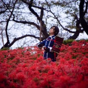 春暁 (無料頒布)
