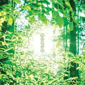 隠れ鬼の森(ネコポス発送)