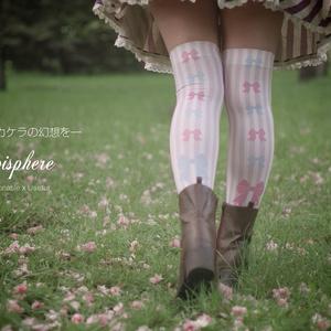 Locked Girl (パチュリー・ノーレッジイメージニーハイ)