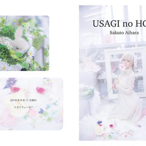 USAGI no HON