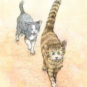 ネコのポストカード(メイと牧場のどうぶつたち)