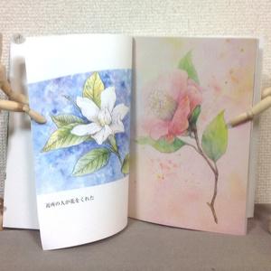 花の絵本 ~ 近所の人が花をくれた