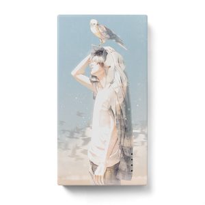 旅鳥 モバイルバッテリー