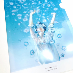 CLEAR FILE 0512