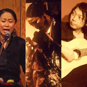 配信投げ銭ライブ 7月29日 (水)JaleOle  flamenco  Live  in  STAX B 落合ゆかり G 渡辺イワオ Cこみほ start  20:00〜 ♪