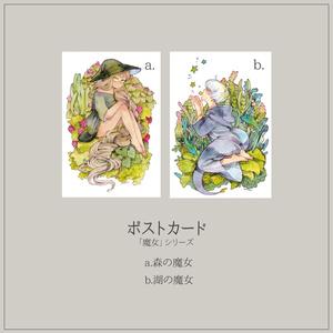 ポストカード各種「魔女シリーズ」