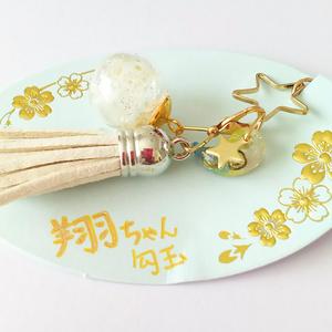 勾玉×ガラスドームの【ワタル2キャライメージストラップ】