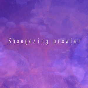 Shoegazing prowler