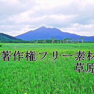 著作権フリー素材(草原)