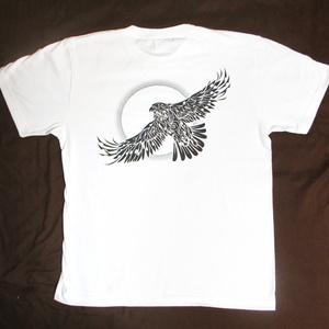 「太陽と鷲」