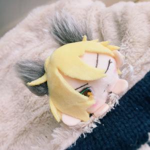 『7月予約生産』オオカミ耳セット