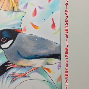 【原画】少年と鳥★送料無料