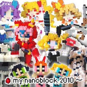 my nanoblock 2010~