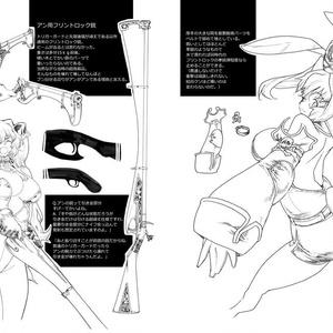 FateGO アン&メアリーのメモ 2
