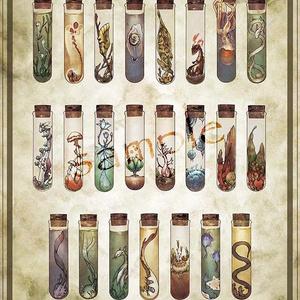 ポスター「奇妙な標本」