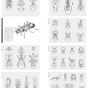 未確認昆虫図鑑