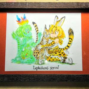 額付イラスト『Leptailurus serval Ⅱ』B55