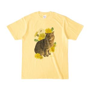 河原の野良猫 ムー