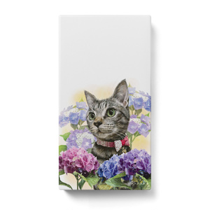 紫陽花ときじとら猫