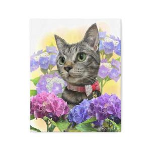 紫陽花ときじねこさん