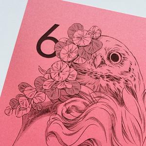 【6月】カレンダー 1枚単品