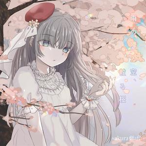 雨の降る空、散る桜