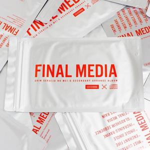 FINAL MEDIA