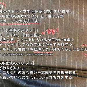 【コットン生地】サリエリ ver.03.5【会計ポーチ】