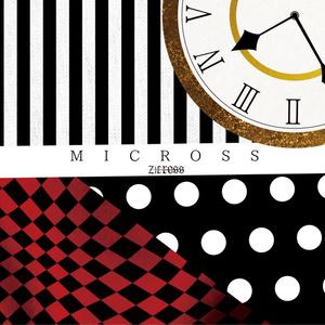 mini album / MICROSS