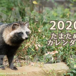 2020たまたぬカレンダー(卓上)
