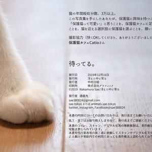 保護猫写真集「待ってる。」