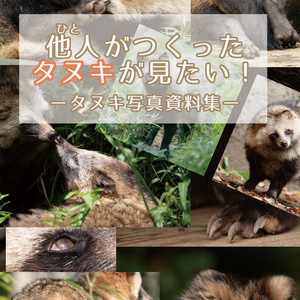 他人がつくったタヌキが見たい! ―タヌキ写真資料集―