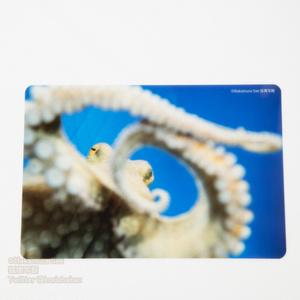 クリアポストカード