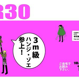 R30 10/12号