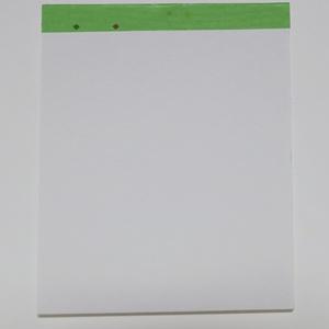 【和紙】極妻チョロメモ帳【大】