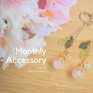 Monthly Accessory