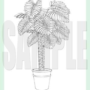 yl03_foliage_plant01-05.zip