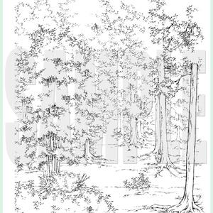 yl03_forest_03.zip