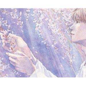大判ポストカード『春夏秋冬』