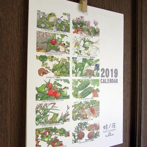 【サンプル】2019年カエルカレンダー[蛙暦]