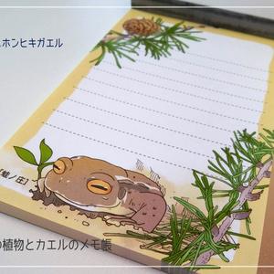 季節の植物とカエルのメモ帳