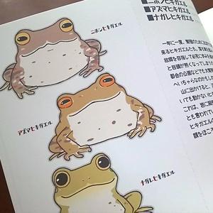 ポストカードブック-日本の蛙-