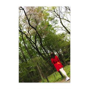 【コスプレポストカード】(天つ乙女と毛獣)ヤマザクラとタキリ姫